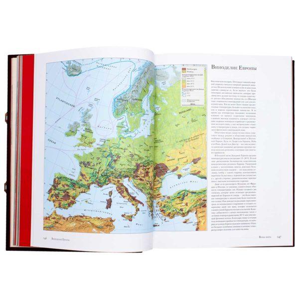 Книга «Андре Домине. Вино»