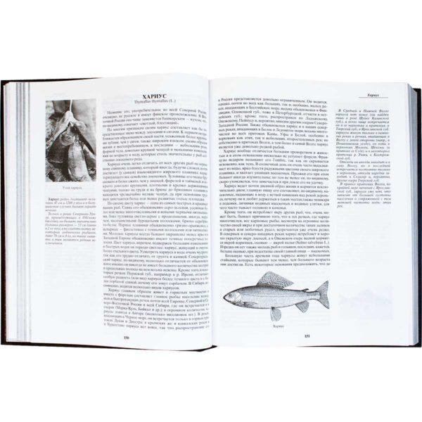 Книга «Сабанеев. Жизнь и ловля пресноводных рыб»
