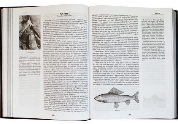Книга «Жизнь и ловля пресноводных рыб» с иллюстрациями