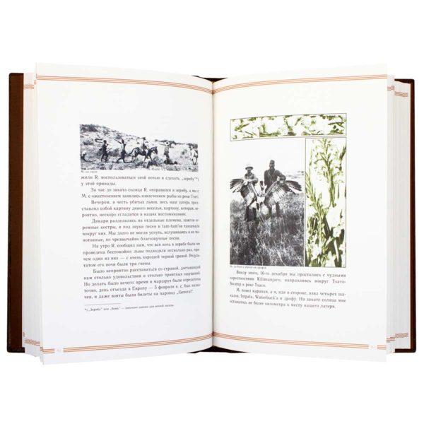 Книга «В джунглях Африки, дневник охотника»