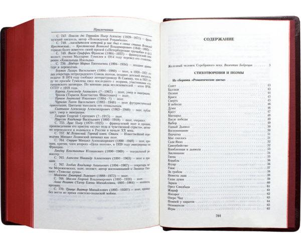 Книга «Николай Гумилев: Малое собрание сочинений» стихотворения и поэмы