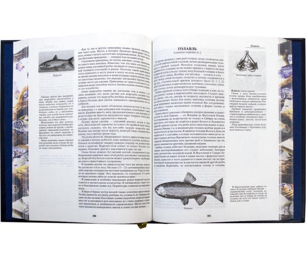 Книга «Сабанеев: Жизнь и ловля пресноводных рыб»