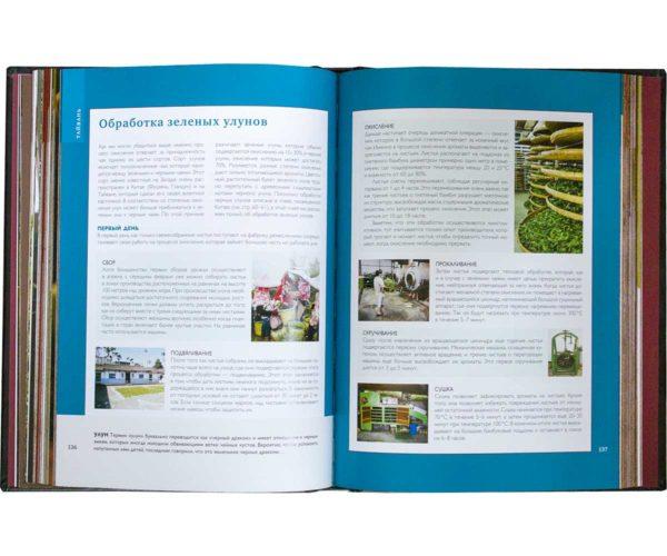 Издание «Большая книга чая. Разновидности, приготовление, история» Обработка зеленых улунов